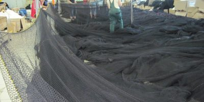 Purse seine nettings - Netmark